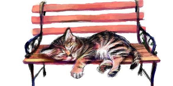 Котёнок на Лавочке